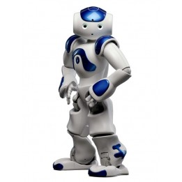 NAO Evolution, programmable humanoid robot in blue