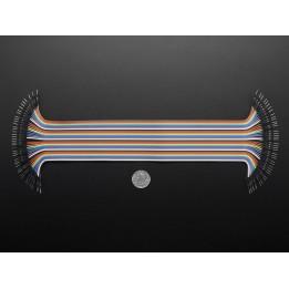 Nappe de 40 câbles Jumper premium M/M (300 mm)