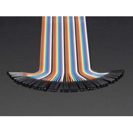 Nappe de 40 câbles Jumper premium M/F (300 mm)