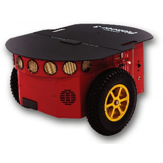 Pioneer P3-DX mobile robot