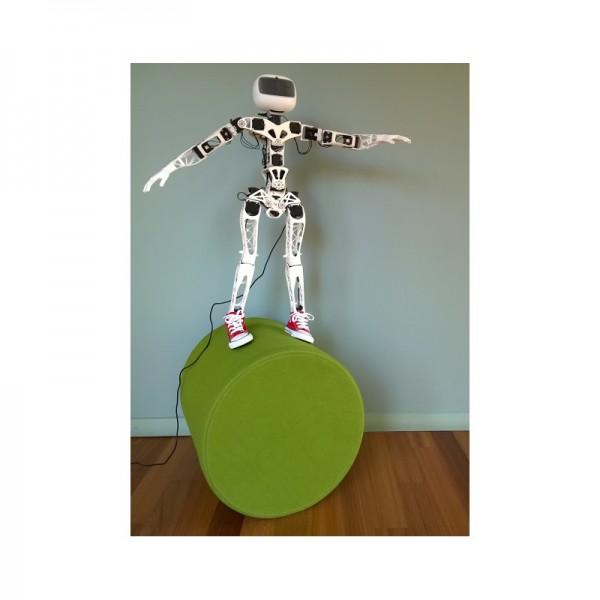 Poppy Humanoid Roboter (ohne Teilen aus 3D Druck) - Raspberry Version
