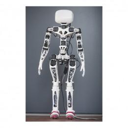 Robot Poppy Humanoid version Raspberry (sans impressions 3D)