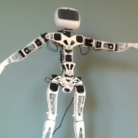 Poppy Humanoid Robot (without 3D printed parts) - Raspberry version