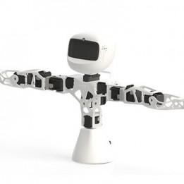 Robot Poppy Torso version Raspberry Pi (sans impressions 3D)