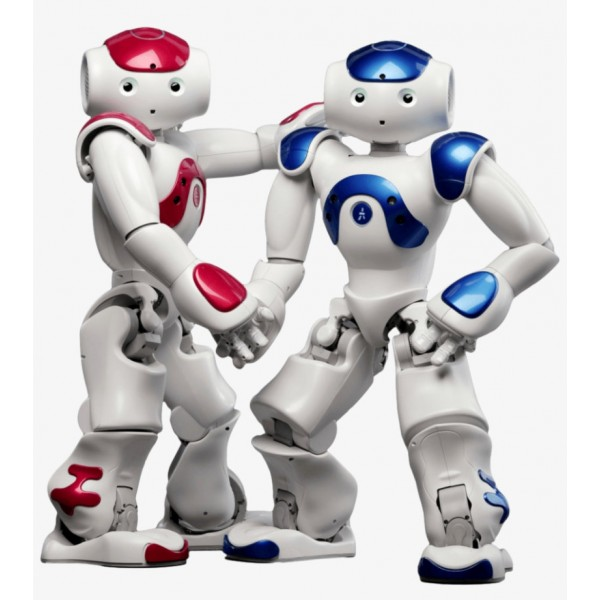 Premium bundle - Programmable humanoid NAO Evolution Robot