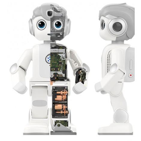 Robot éducatif humanoïde Alpha mini