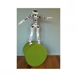 Poppy Humanoid Roboter Raspberry Pi version (mit Teilen aus 3D-Druck)