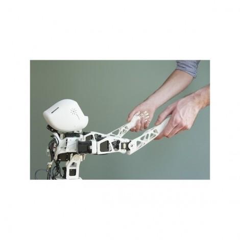 Robot Poppy Torso version Raspberry Pi (avec impressions 3D)