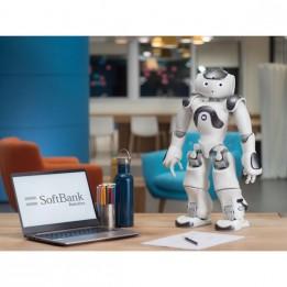 Programmable Humanoid Robot   NAO V6