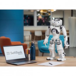 Programmierbarer humanoider Roboter NAO Version 6