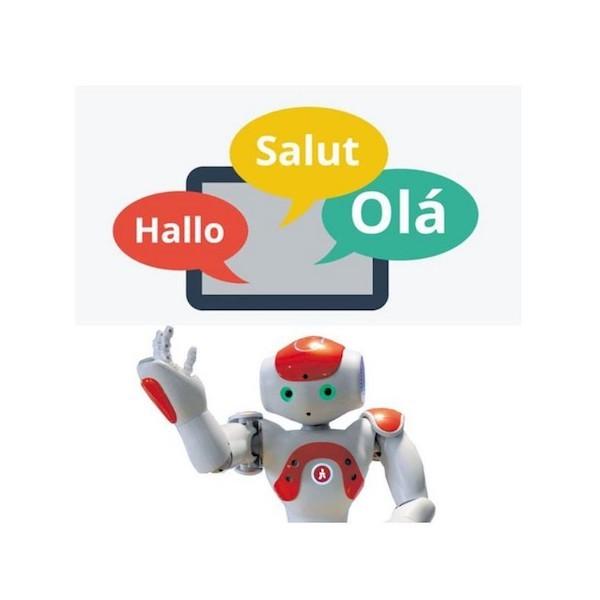 Additional language for NAO robot