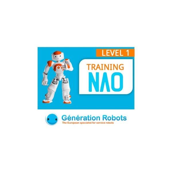 NAO-Programmierkurs - Stufe 1 - 2 Tage