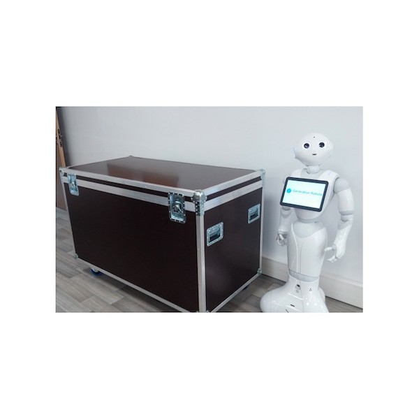 Carrying flight case for PEPPER humanoid robot