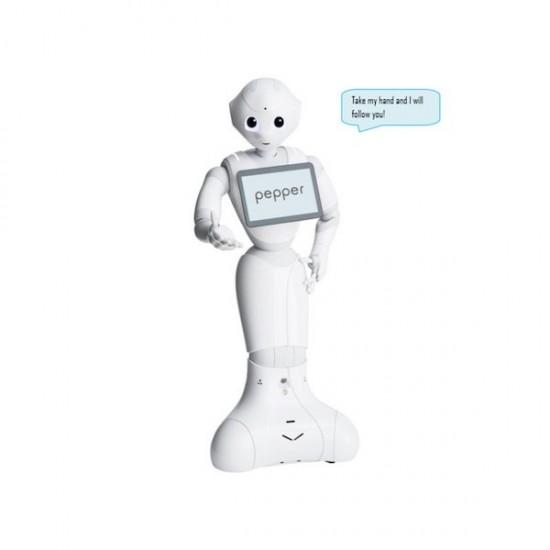 Pepper Follow Me (Folge Mir) Application - 1 Roboter Lizenz