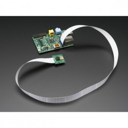 Câble flexible 200mm pour caméra Raspberry Pi