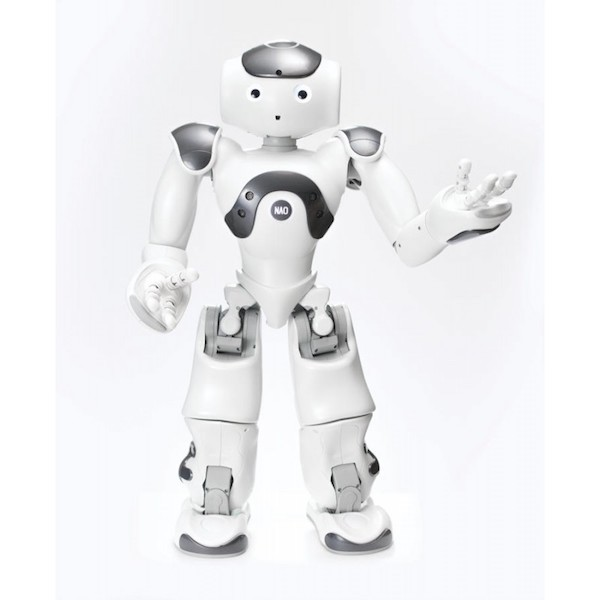 Softwarelizenz Zora für humanoide Roboter NAO