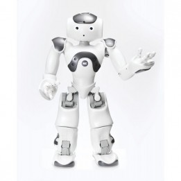 Zora Software Suite for the NAO humanoid robot