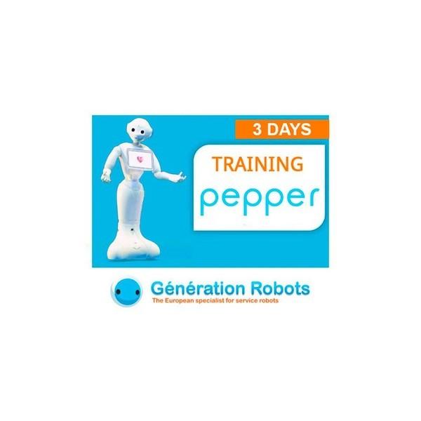 Training - Learn how to program PEPPER - 3 days