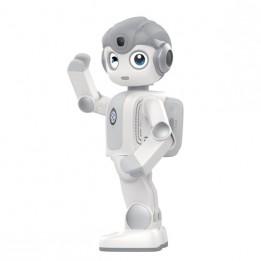 Humanoider Lernroboter Alpha Mini