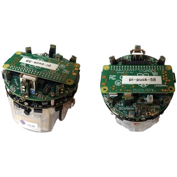 Extension Pi-puck pour robot E-Puck2