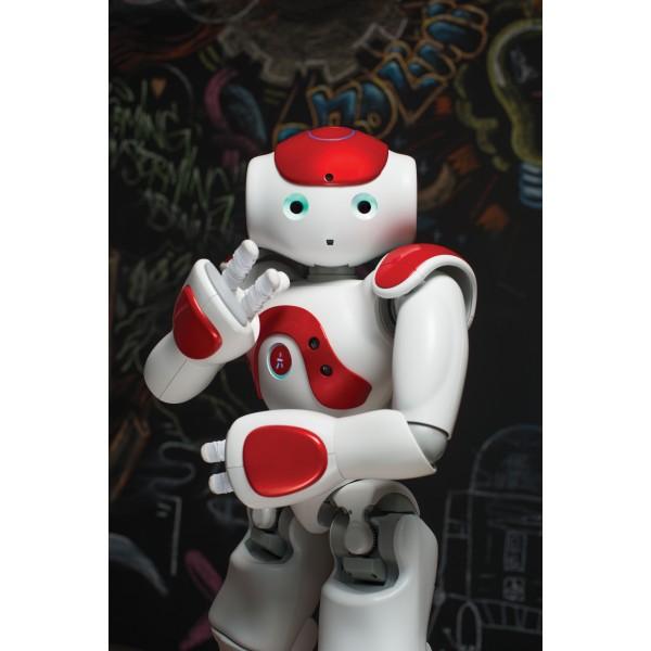 Essential bundle - Programmable humanoid NAO Evolution