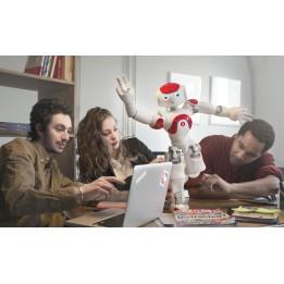 Expert bundle - Programmable humanoid NAO Evolution Robot