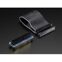 Pi Cobbler Plus assemblé et câble GPIO pour Raspberry Pi B+/A+/Pi2
