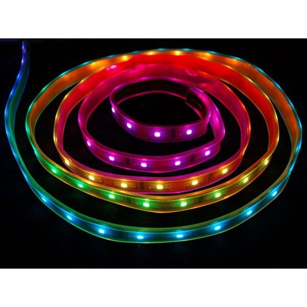 Digital Weatherproof 32 LED/Metre Strip