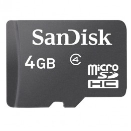 Carte MicroSD 4Go