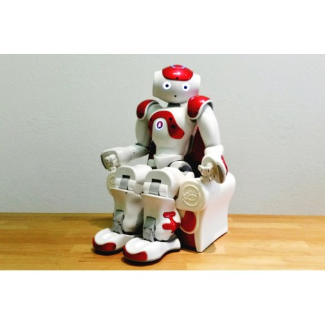 Magic Seat pour NAO - Full version