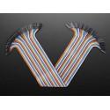 Nappe de 40 câbles Jumper Extension premium F/F (300 mm)