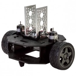 Châssis robotique Peewee Runt Rover™