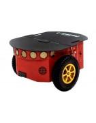 Pioneer mobile robots