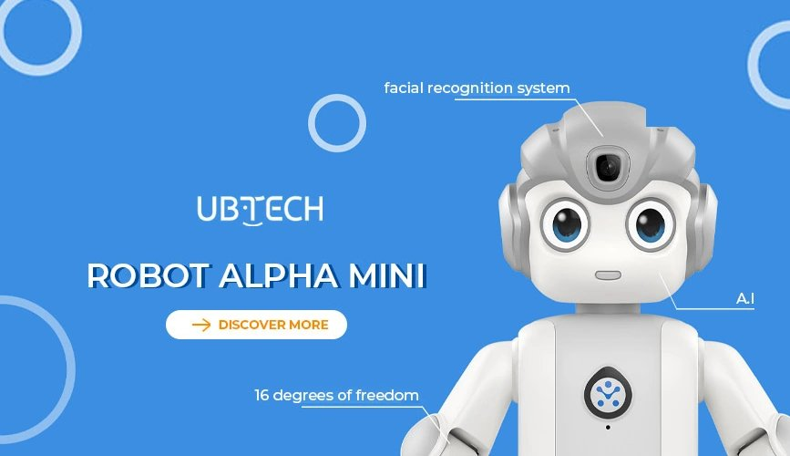 Alpha Mini humanoid educational robot