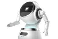 Humanoid service robots