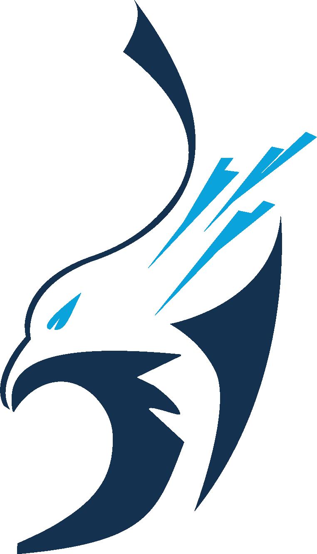 Logo Running Brains